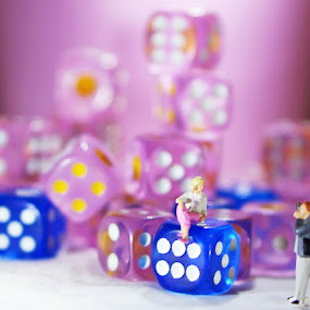 Posing for the camera by Alice Chia - Artistic Objects Toys ( tiny, scale, colourful, blue, photographer, dices, pink, small, 1/187, miniature )