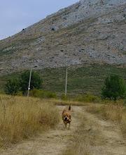 Photo: Ydalgo near of Leon
