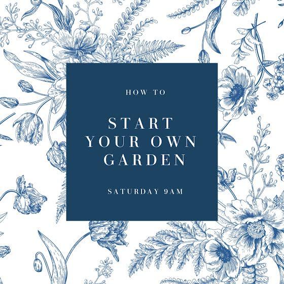 Start Your Own Garden - Instagram Carousel Ad Template