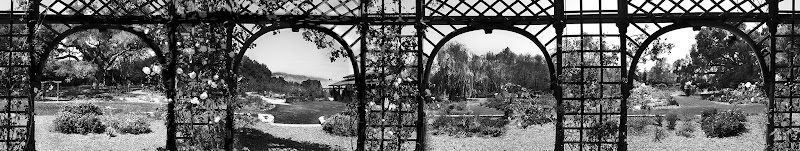 """Photo: Descano Gardens, Los Angeles, CA. Gazebo  A gazebo frames the garden and based on where """"you"""" are inside of it a little bit different. I shot one time around (360º).  #MonochromeMonday curatored by +Charles Lupica, +Hans Berendsen and +Jerry Johnson."""