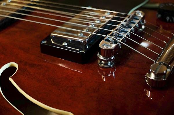 chitarra di massimo bertozzi