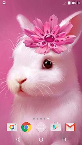 Cute Animals Live Wallpaper
