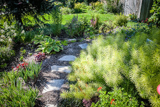 Photo: This garden is home to drought-tolerant plantings AND a lovely #rainscape, all on Milton clay. Choose plants to suit soil.