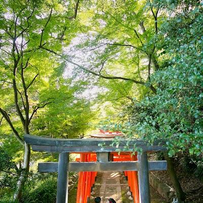 Wedding photographer Kenichi Morinaga (morinaga). Photo of 01.01.1970