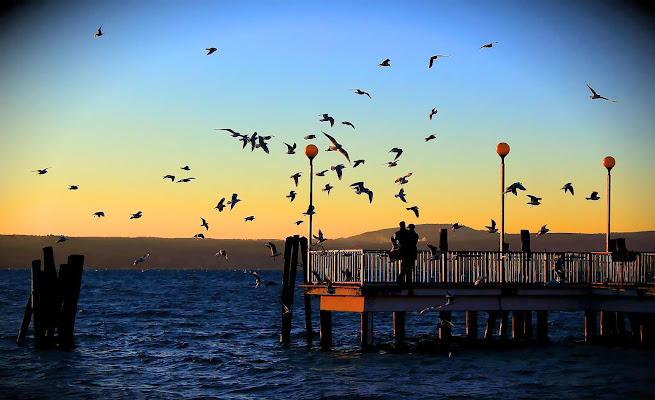 Amore al tramonto di Tomassetti Sara