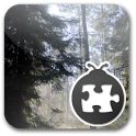 Lightning Bug - Forest Pack icon
