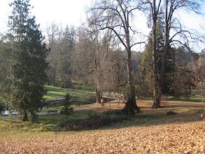 Photo: Przy pięknej, słonecznej pogodzie w parku było ślicznie.