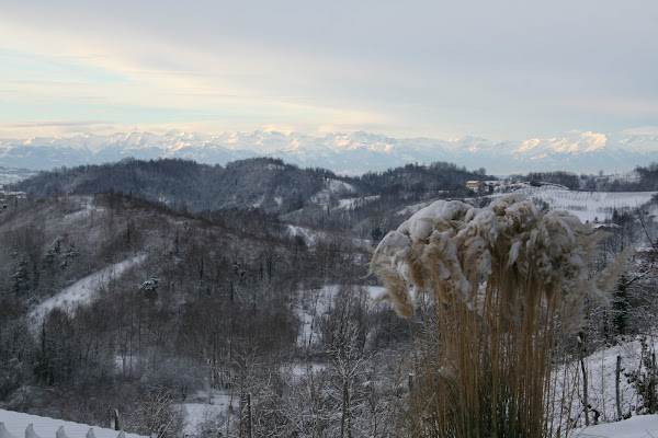 Le Langhe in inverno di smpaint