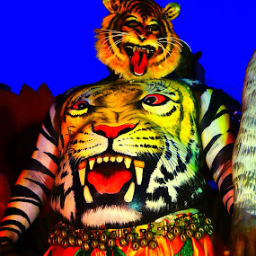 Human Tiger by S Nair - People Street & Candids