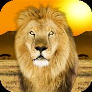 Popar Safari