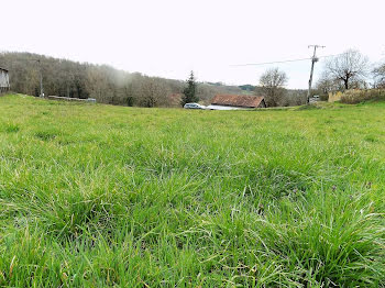 terrain à Saint-Aubin-de-Nabirat (24)