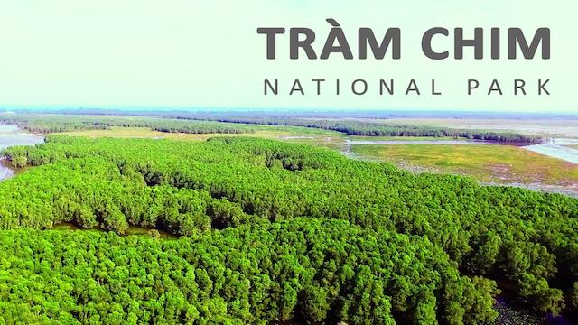 Vườn quốc gia Tràm Chim ở Đồng Tháp