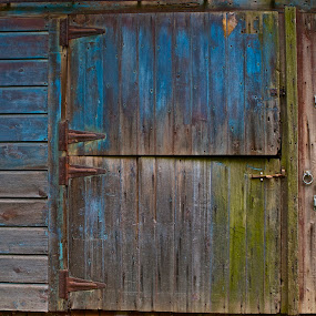 Barn Door by Denise Zimmerman - Buildings & Architecture Other Exteriors ( farm, blue, colors, green, door )