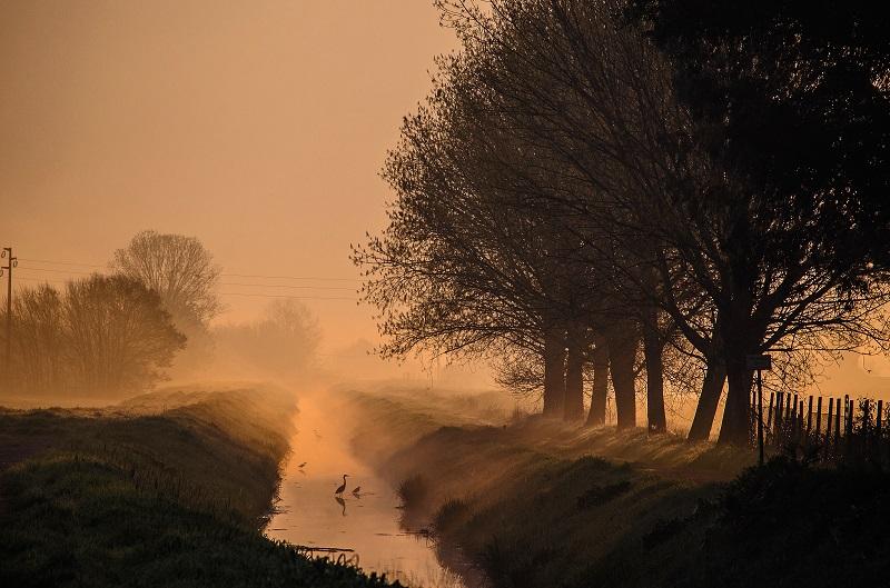 sagome nella nebbia di lorenzo.malevolti.14