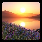 Lake Sunset Live Wallpaper
