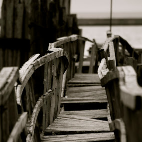 by Jill Laudenslager - Buildings & Architecture Bridges & Suspended Structures ( blackandwhite, wood, park, bridge, dock )