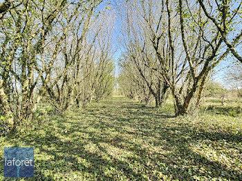 terrain à Moutiers-sous-Chantemerle (79)