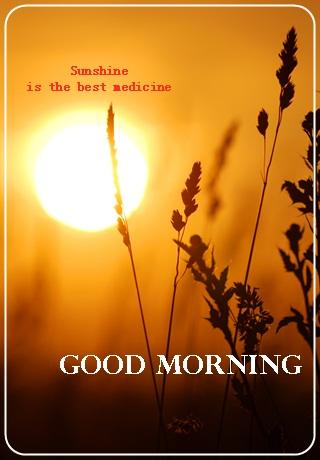 Good morning greetings apk download apkpure good morning greetings screenshot 7 m4hsunfo