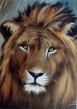Photo: WL005 Lion (for 18 x 24 canvas) $7.99
