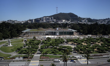 Photo: Academy of Sciences, taken from the de Young Museum