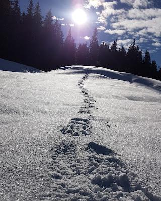 Snowman di Th3_Gh3d0