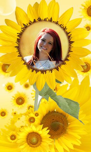 Sunflower Photo Frames