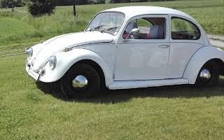 VW Brouk Rent Moravskoslezský kraj
