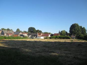 terrain à Busigny (59)