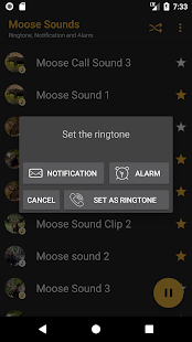 Appp.io - Moose Sounds - náhled