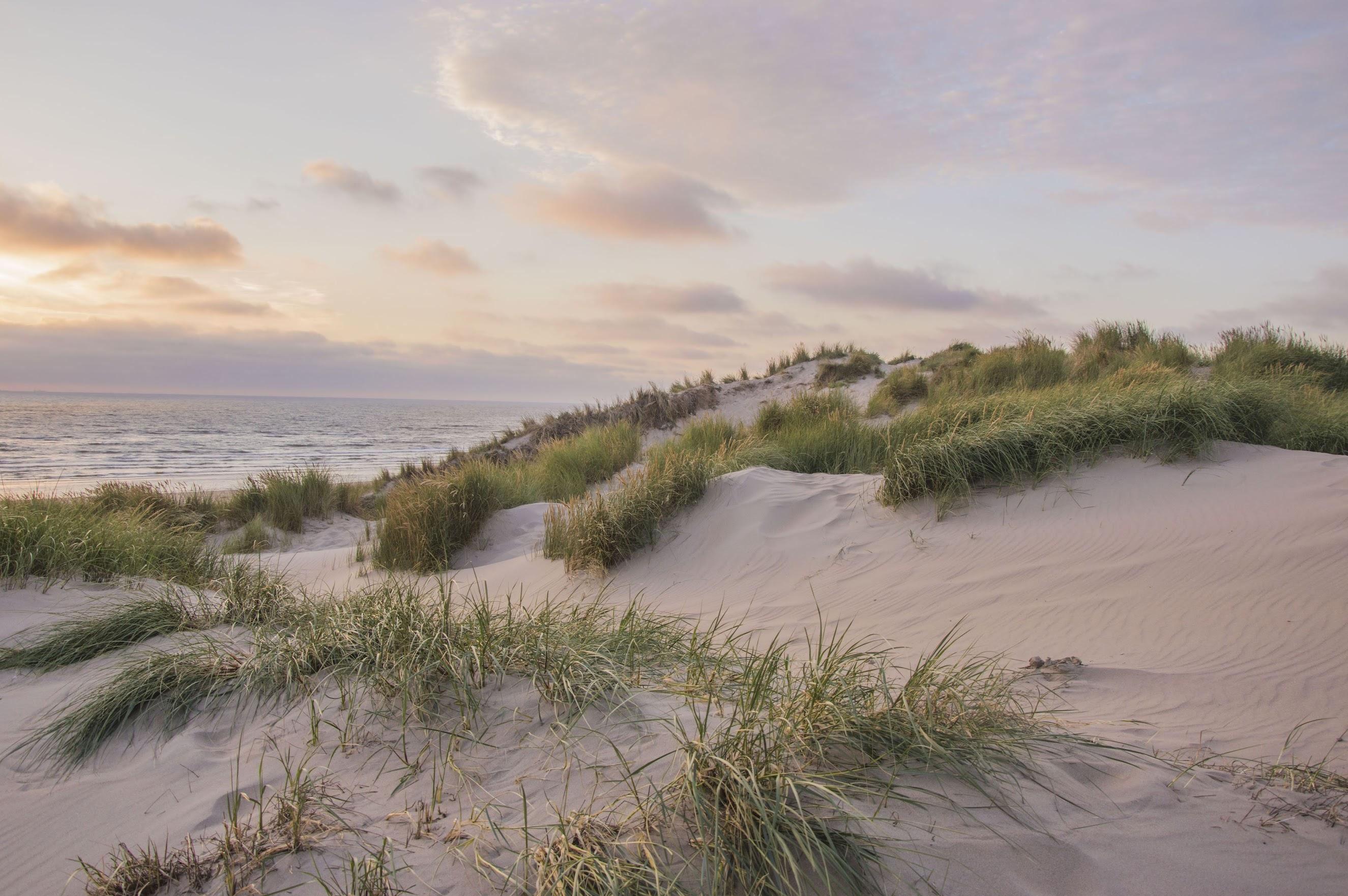 vakantie-aan-zee-nederland