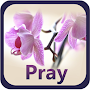Prayer Garden APK icon