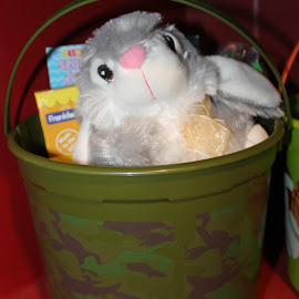 Bunny In A Bucket by Sandy Stevens Krassinger - Public Holidays Easter ( bucket, candy, handle, easter, holiday, bunny )