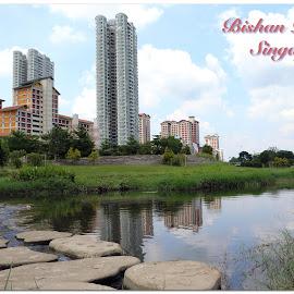 Bishan-Ang Mo Kio Park by Diwakar Rao - Typography Captioned Photos ( bishan park, singapore, bioshan-ang mo kio park )