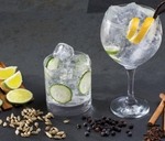Gin Tasting Evening : The Brazen Head Sandton - The Library