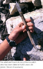 Photo: This dart point with foreshaft and binding has eroded from a Canadian ice patch.