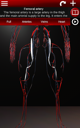 Circulatory System in 3D (Anatomy) 1.58 screenshots 14