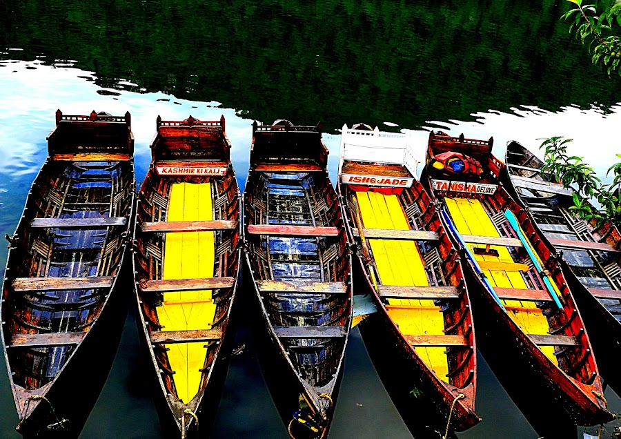 by Vijay Singh - Transportation Boats ( boating, colorful, water transport, boats, transportation )