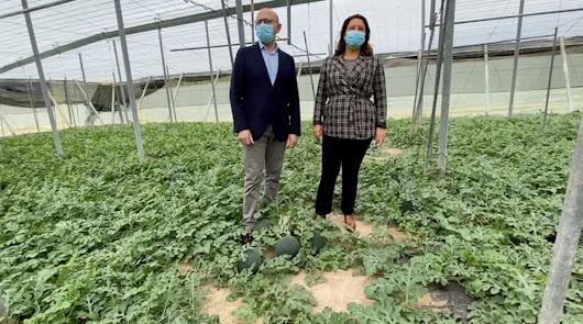 Carmen Crespo valora la apuesta de Almería por el control biológico