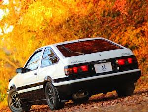 スプリンタートレノ AE86 昭和59年  GT-APEXのカスタム事例画像 keroyosoさんの2020年12月04日11:15の投稿