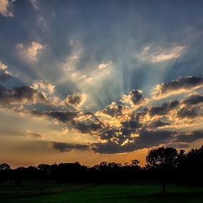 by Carolyn Odell - Landscapes Sunsets & Sunrises (  )
