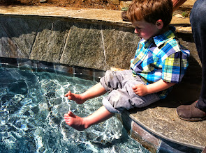 Photo: Finn Feet in The Pool