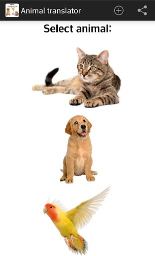 翻譯動物 笑話
