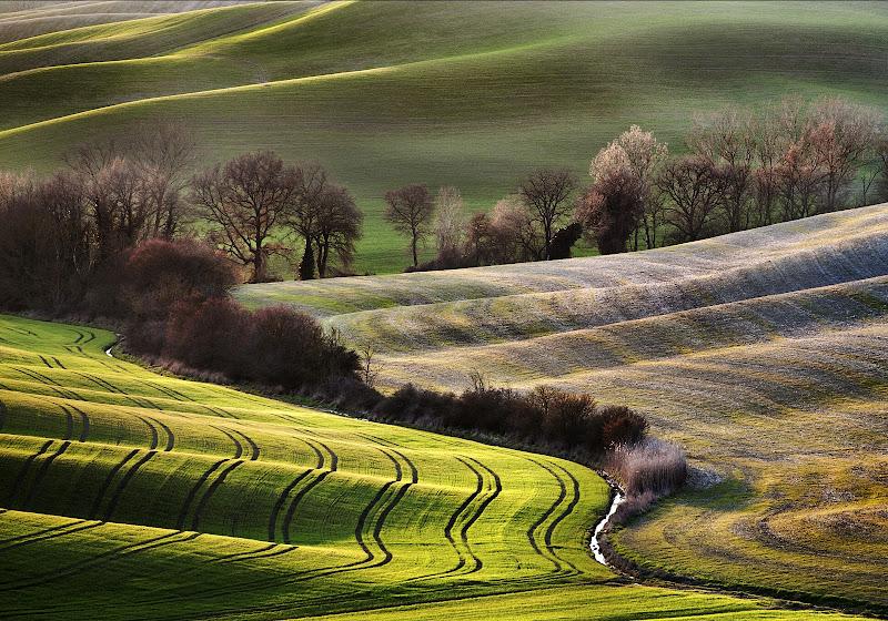 Val D'Orcia di Alberto_Caselli