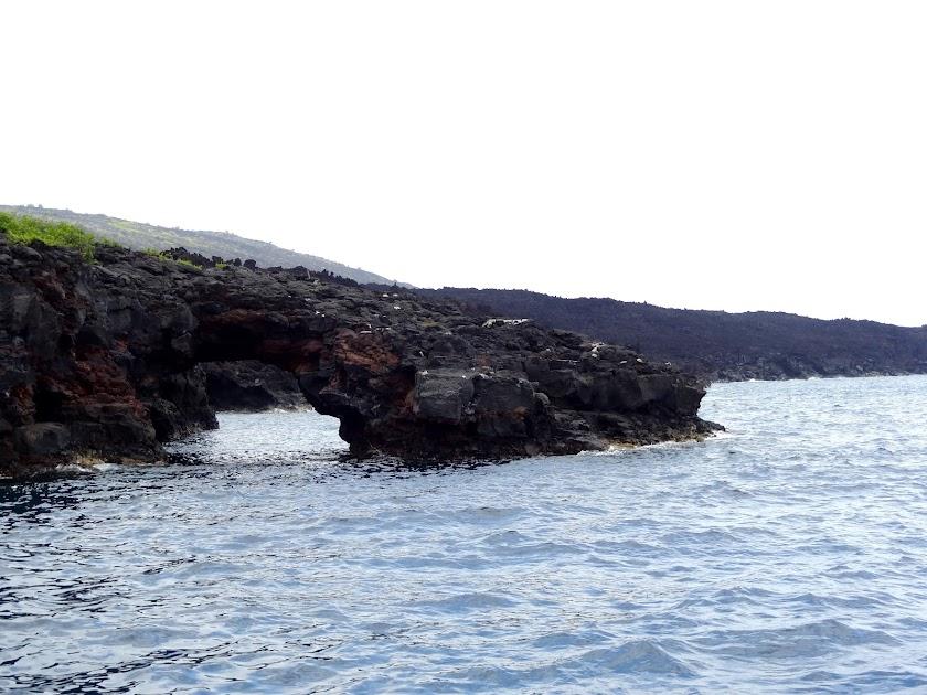 The Shoreline in Hawaii