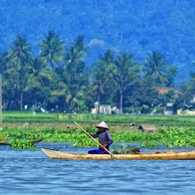 by Ayah Adit Qunyit - Professional People Agricultural Workers