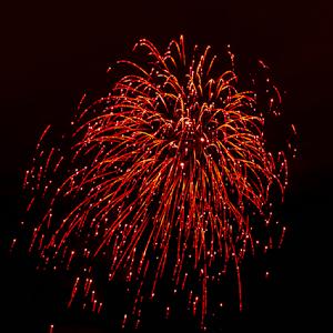 1582.jpg Elk Firework Dec-14-1582.jpg
