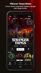 Netflix Premium 1