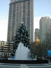 Photo: Lincoln Center Tree