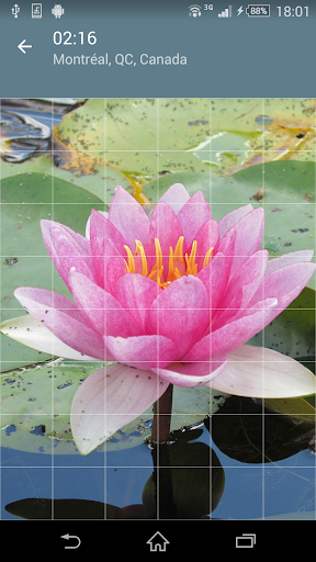 Jigsaw Puzzle: Flowers screenshot 2
