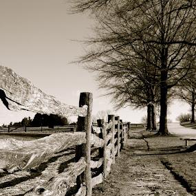 by Natures Grenade - Black & White Landscapes